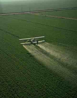 cropduster-spraying-pesticides1.jpg