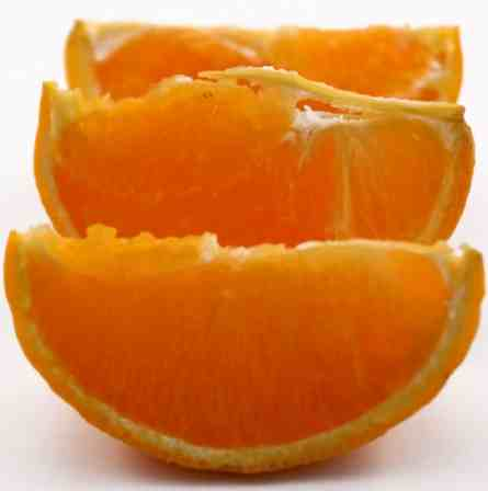 s_orange-slices-1.jpg